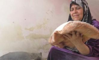 المرأة السورية العاملة