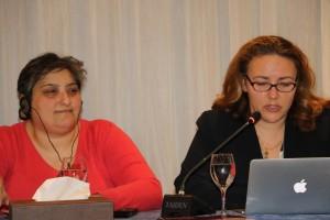 التحديات و الاستراتيجيات المتعلقة بالتسويّة الجندرية الدستورية/EFI-IFE