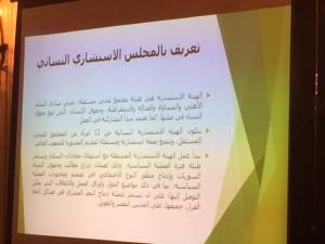 تعريف بالمجلس الاستشاري النسائي للمبعوث الأممي الخاص بسوريا