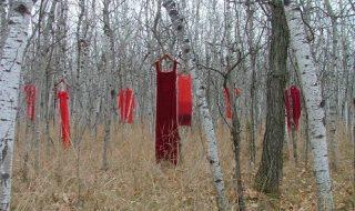 فساتين معلقة على الأشجار ضمن حملة الفستان الأحمر 3