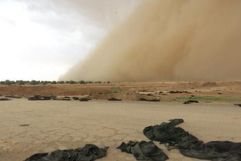 النقاب على الرمال بعد تحرير الرقة من داعش