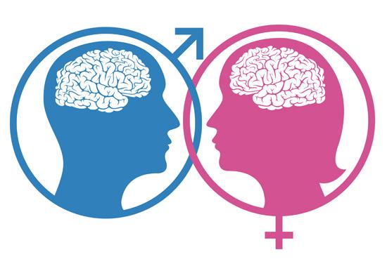 دماغ المراة ودماغ الرجل