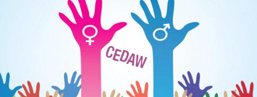 اتفاقية القضاء على كافة أشكال العنف والتمييز ضد المرأة
