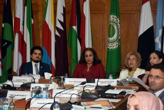 الاجتماع التشاوري حول مهام لجنة الطوارئ لحماية النساء أثناء النزاعات المسلحة