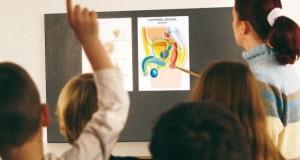 الثقافة الجنسية في المدارس الألمانية