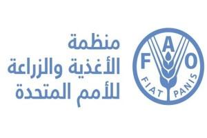 FAO منظمة الفاو