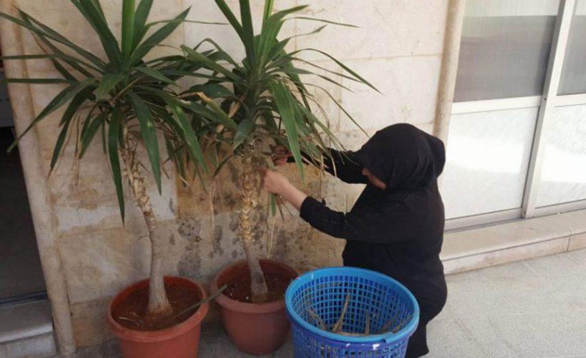 أم عبدو أثناء عملها في أحد البيوت (سوريتنا)