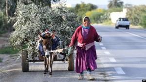 امرأة ريفية تونسية في مدينة القيروان/ AFP
