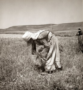 Alawite woman gleaning in 1938/ wikipedia