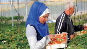 برفقة والدها الذي يساعدها بعملها داخل المزرعة (الشرق الأوسط)