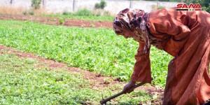 حمص.. مشاريع المرأة الريفية
