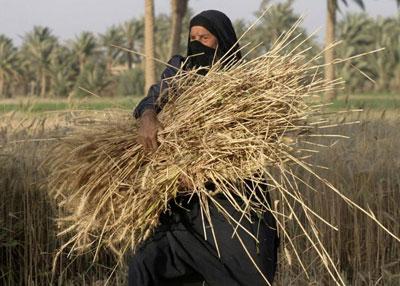 المساهمات التنمويّة للمرأة الريفيّة في سورية