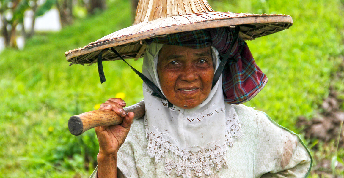 West Sumatra, Indonesia - 26th July 2010. An elderly female rice farmer walks along the edge of a rice field carrying a hoe.