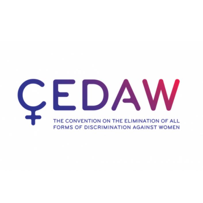 اتفاقية القضاء على جميع أشكال التمييز ضد المرأة
